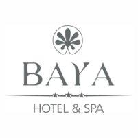 baya-hotel-cabinet-de-consultant-gite-hotellerie-tourisme-stillfull