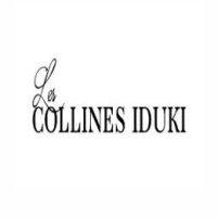 collines iduki-cabinet-de-consultant-gite-hotellerie-tourisme-stillfull